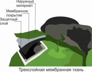 mem3-lay-300x233.jpg