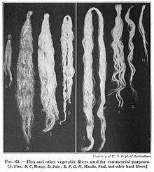 220px-19th_century_knowledge_weaving_flax_hemp_jute_manila_sisal_vegetable_fibers.jpg