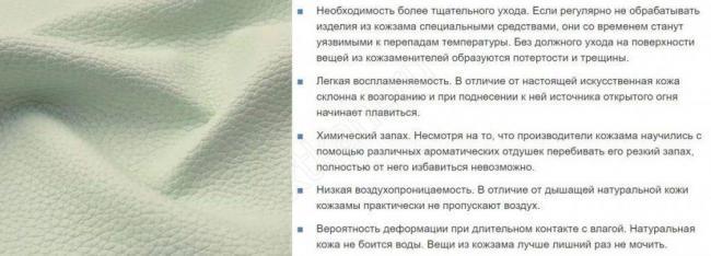 iskysstvennaya-koza5-1024x370.jpg